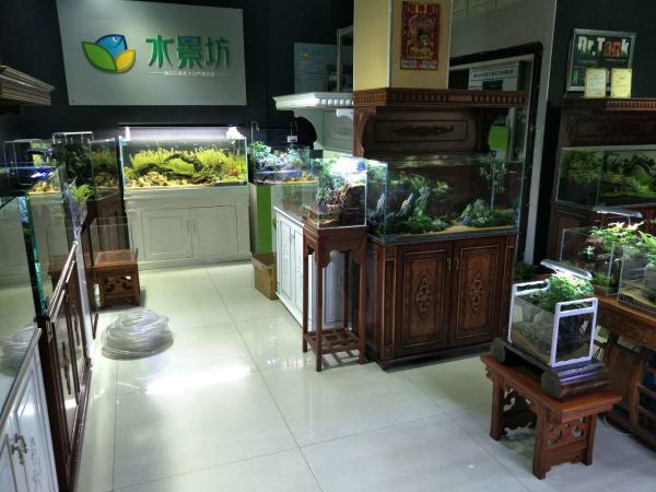 山西代县水族馆加盟店
