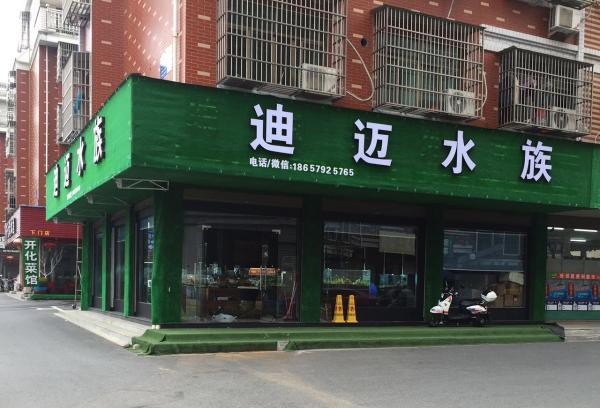 浙江省义务市水族加盟店