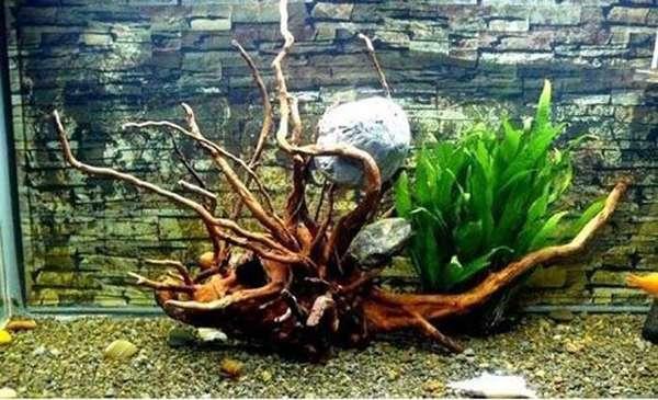 缸沉木造景概括