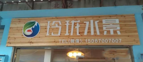 衢州君悦佳奥汽车公司办公室水景案例