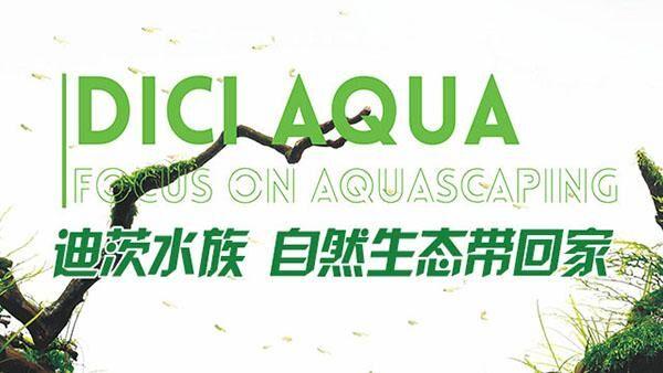 水族馆加盟:寻找与众不同的你,一起创业成就梦想