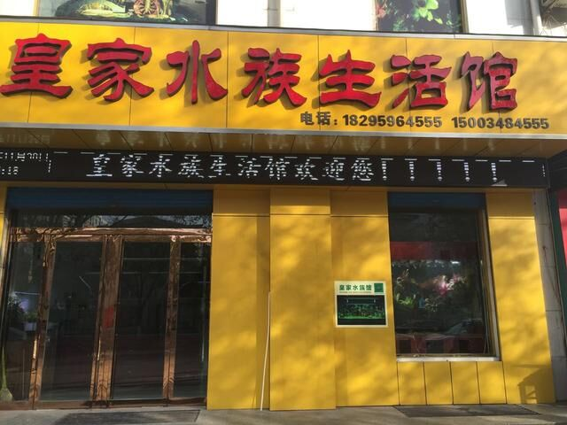 水族馆加盟案例:河津皇家水族生活馆案例分享