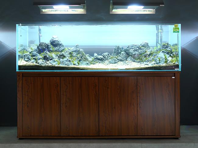 迪茨180系列超白鱼缸