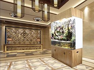 迪茨180生态雨林缸