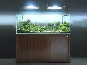 迪茨150系列超白鱼缸
