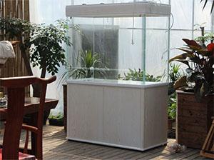迪茨美景雨林缸120系列